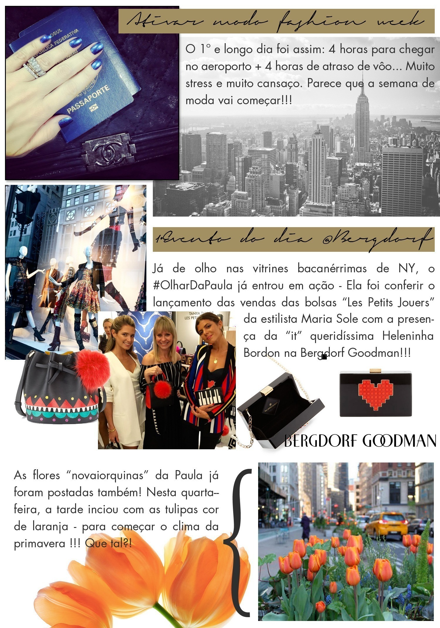Diario 1 NY