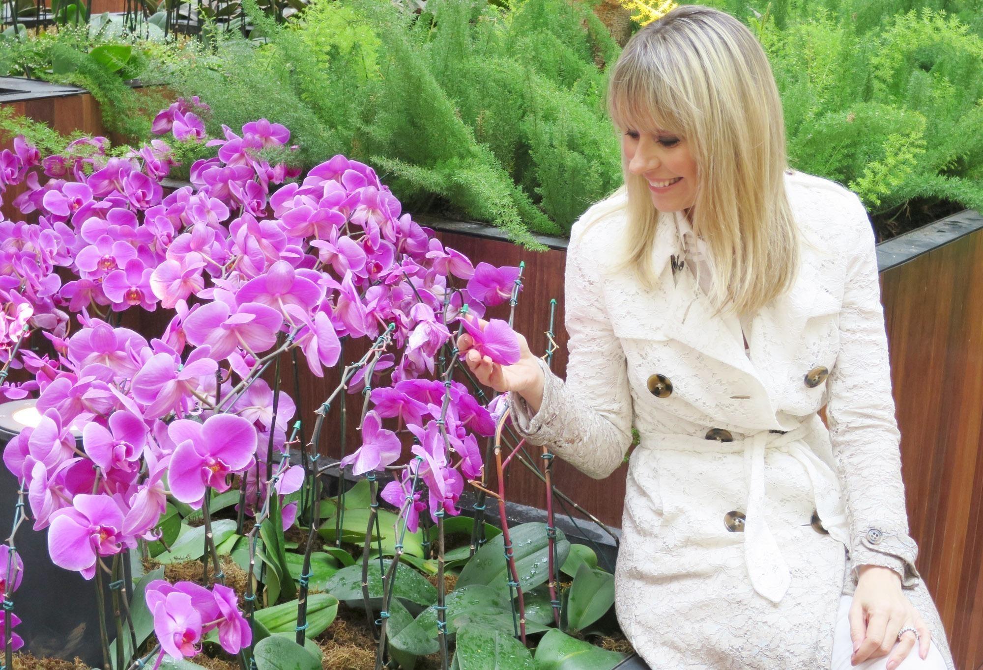 Paula Martins Trench coat Burberry renda 6